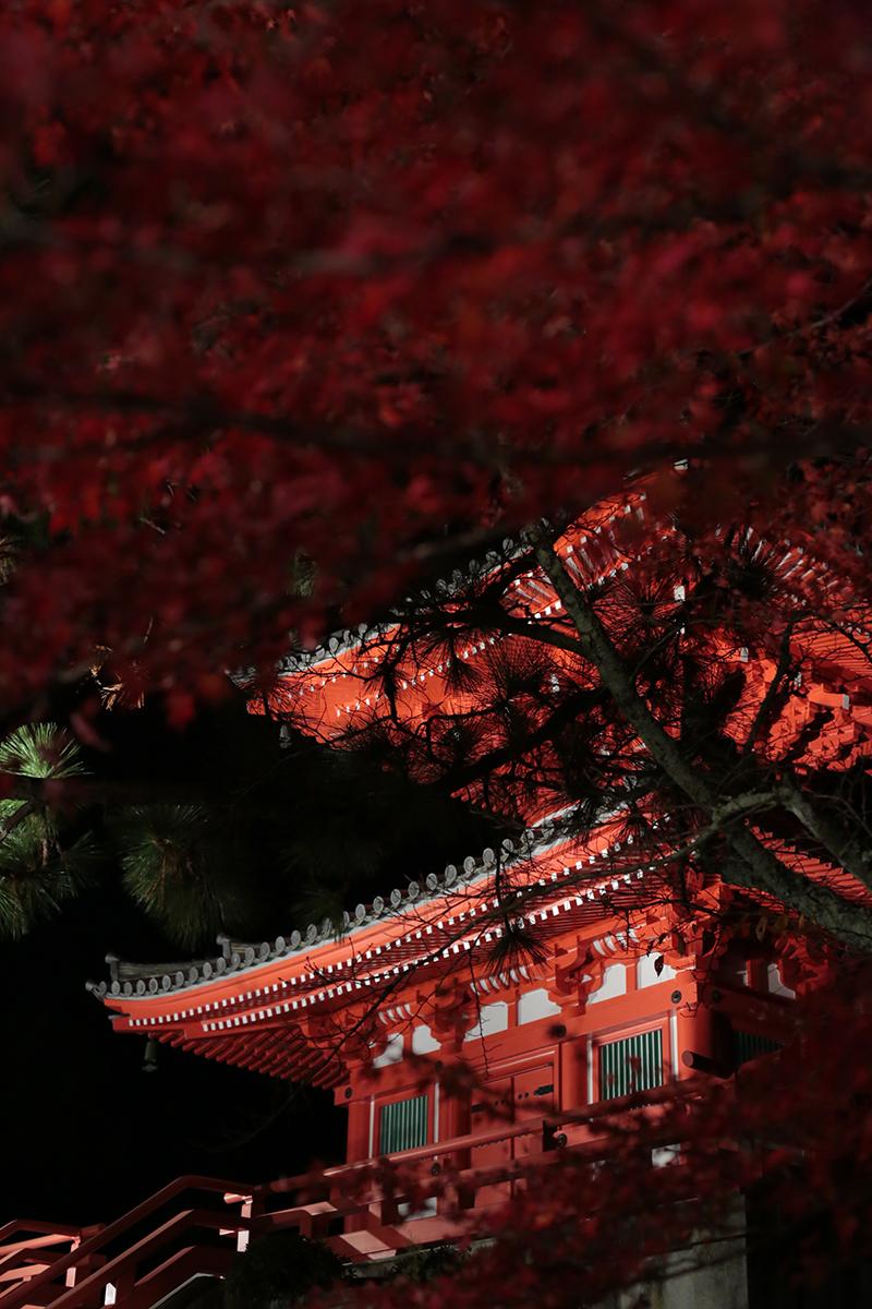 嵐山 大覚寺