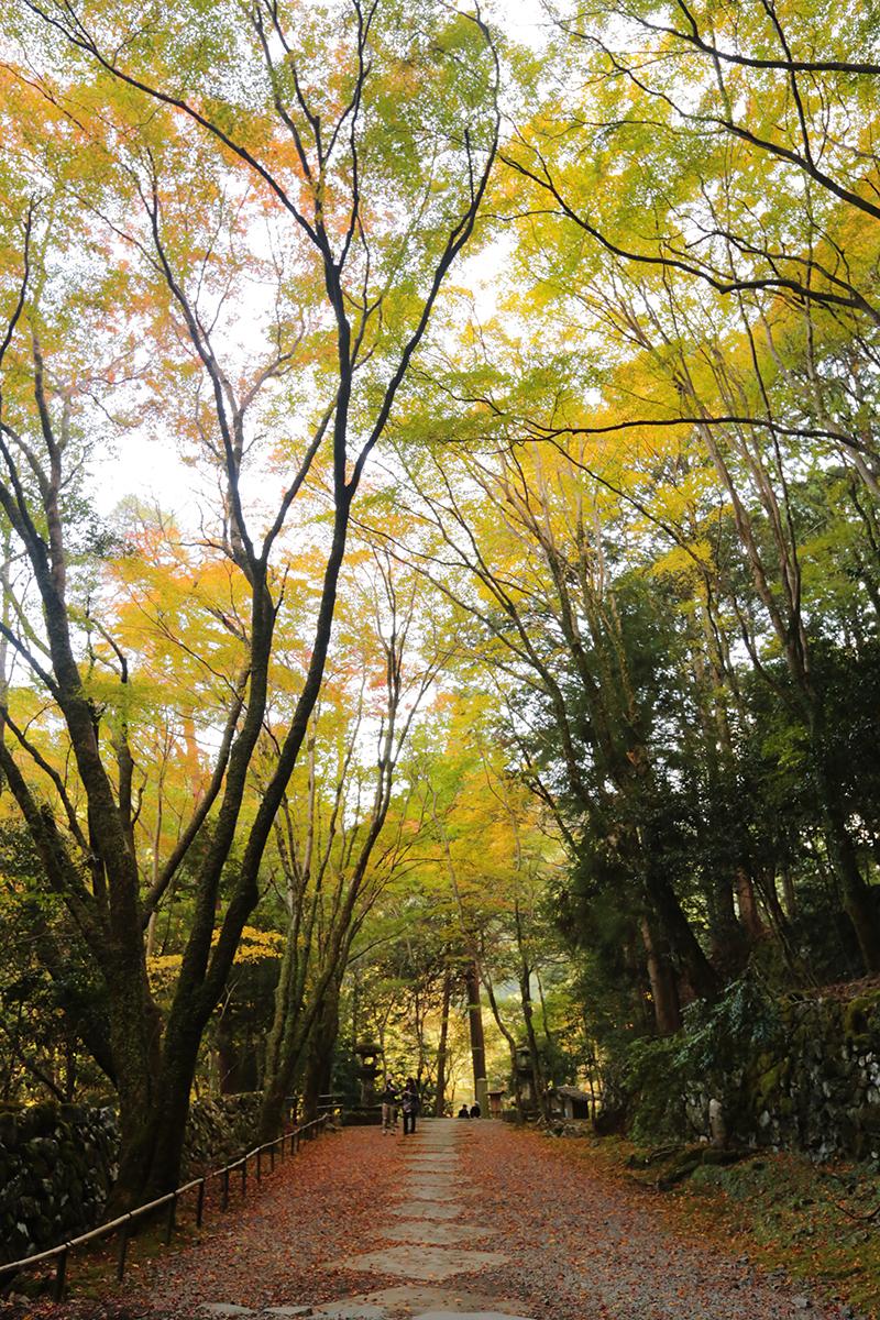 高雄 高山寺