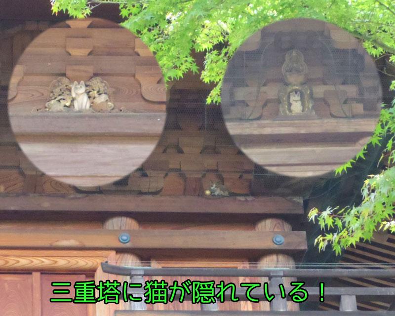 三重塔に猫が隠れている!
