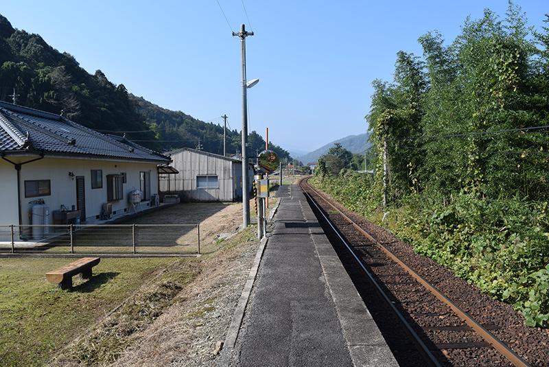 photo254