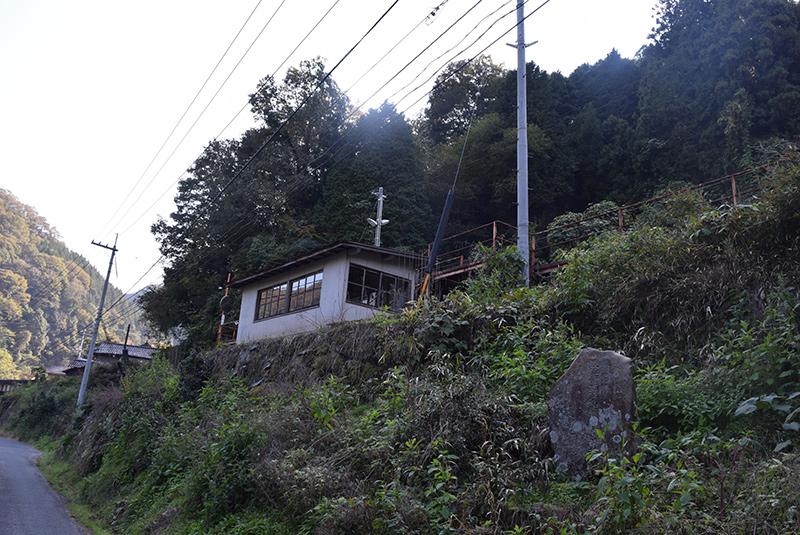 photo288