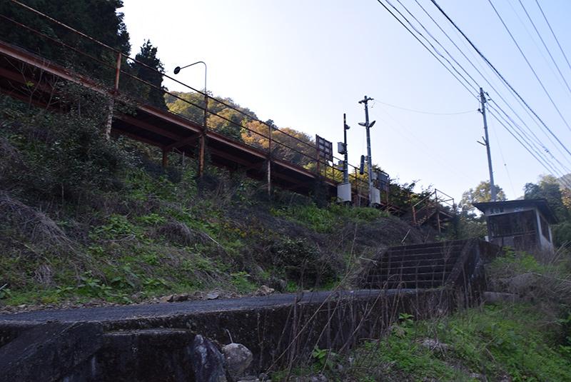 photo290