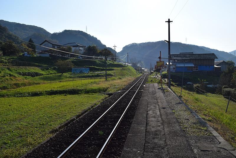 photo303