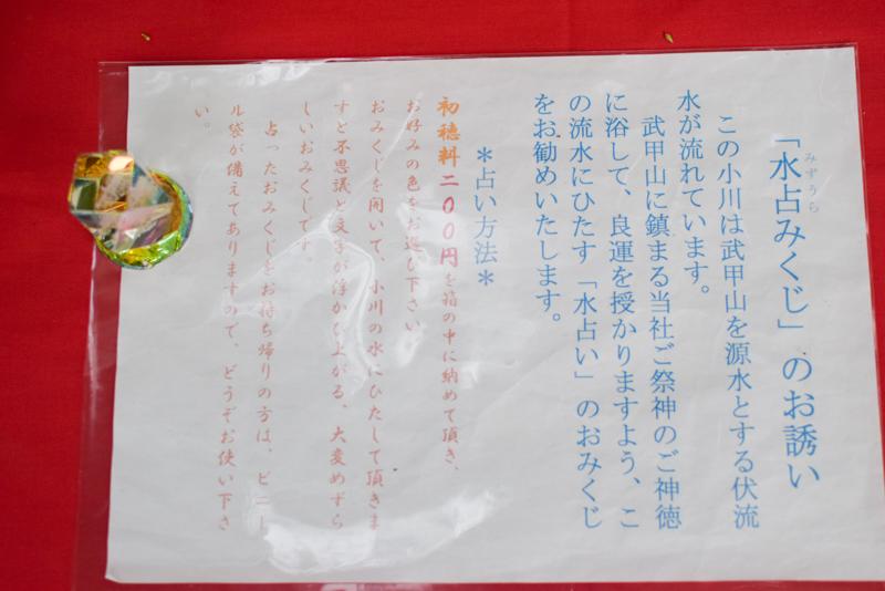 DSC_秩父神社水占