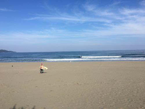 サーファーのメッカと呼ばれる西南大規模公園のビーチ