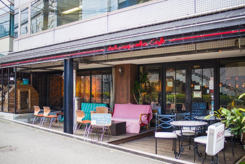 shibuya_yagi-cafe-9