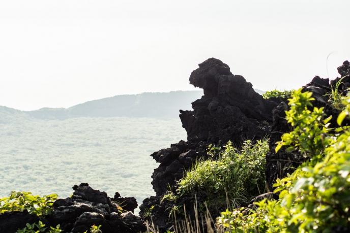 20170518_izu-ooshima-233