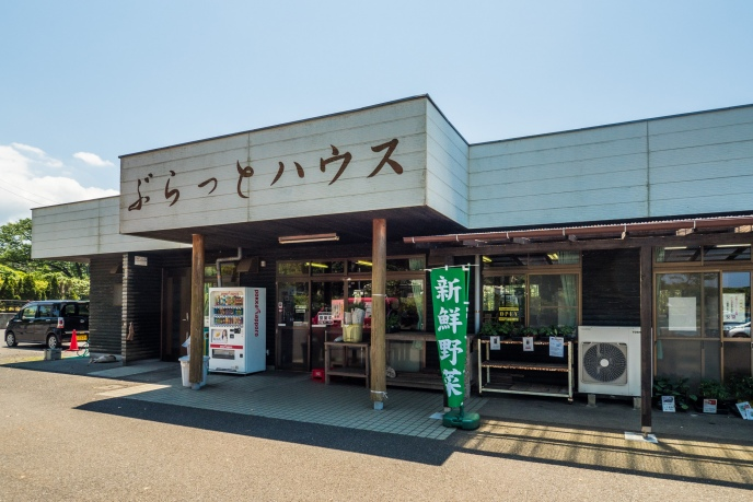 20170518_izu-ooshima-376