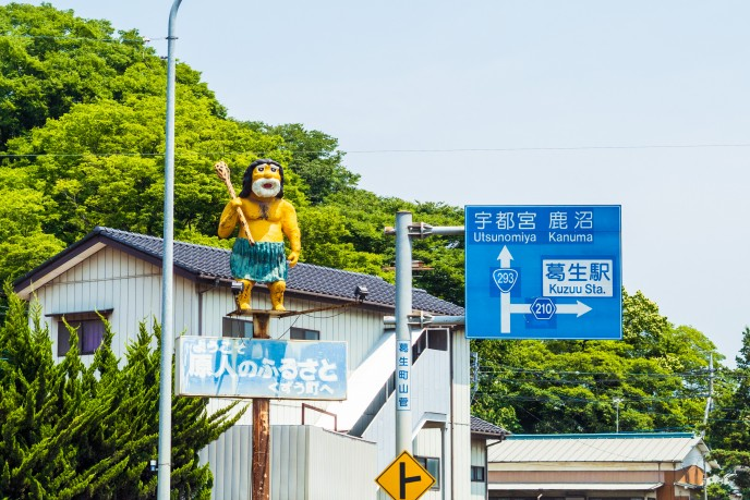 20170619_kodaimura-215