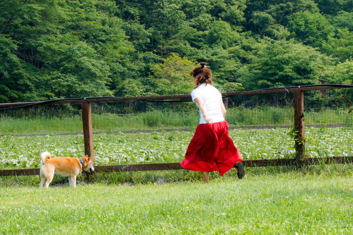 karuizawa-dog-06939