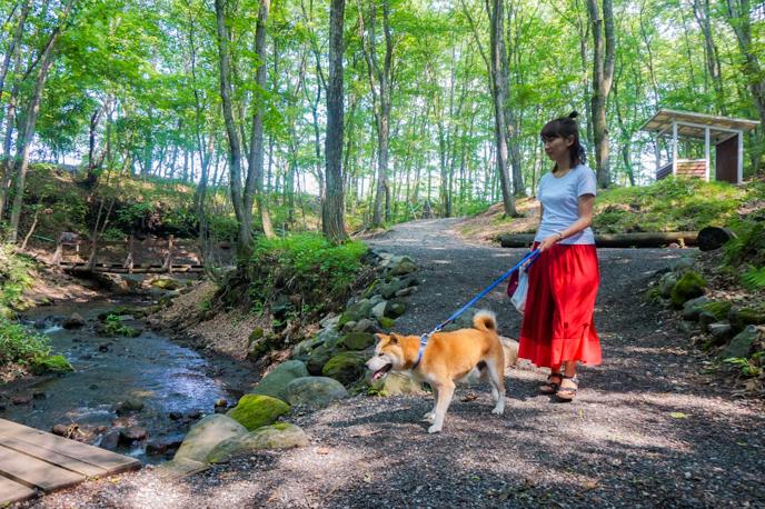 karuizawa-dog-07005