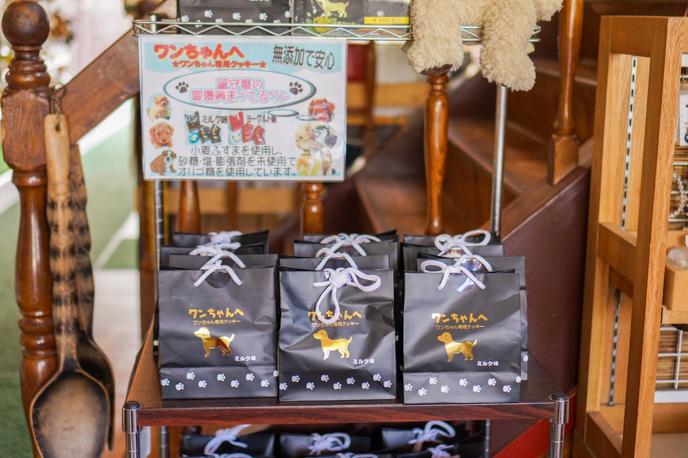 karuizawa-dog-spot-07144