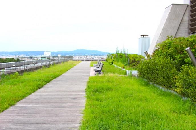 奈良県庁舎屋上