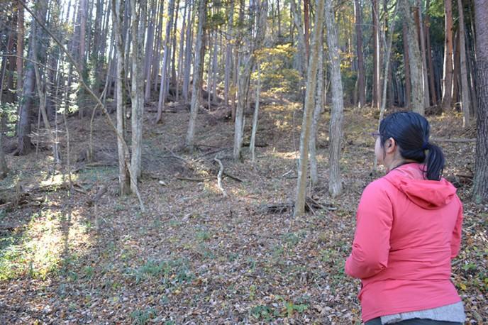 実際の森へ