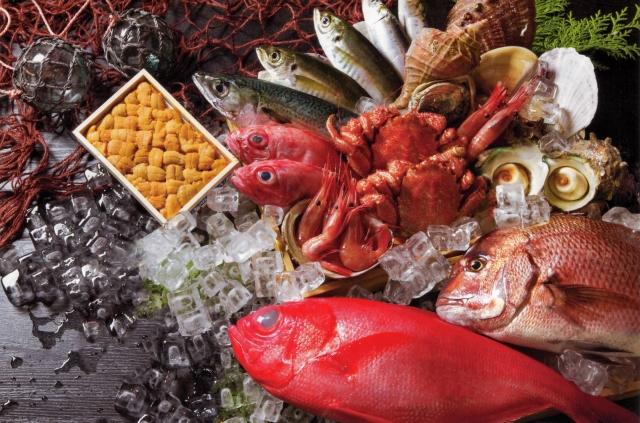 魚のイメージ