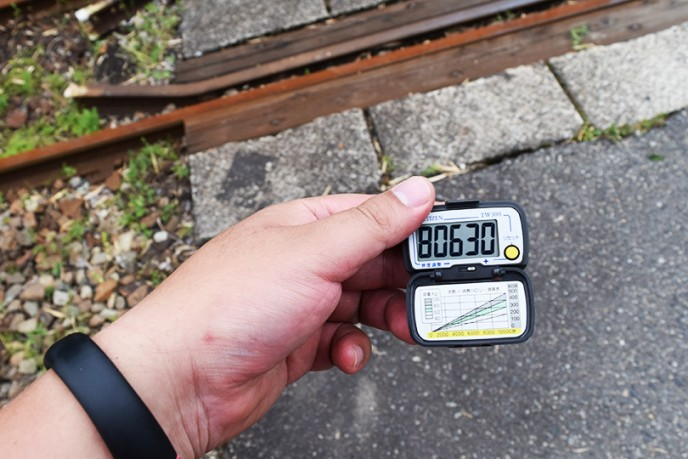 haisen316