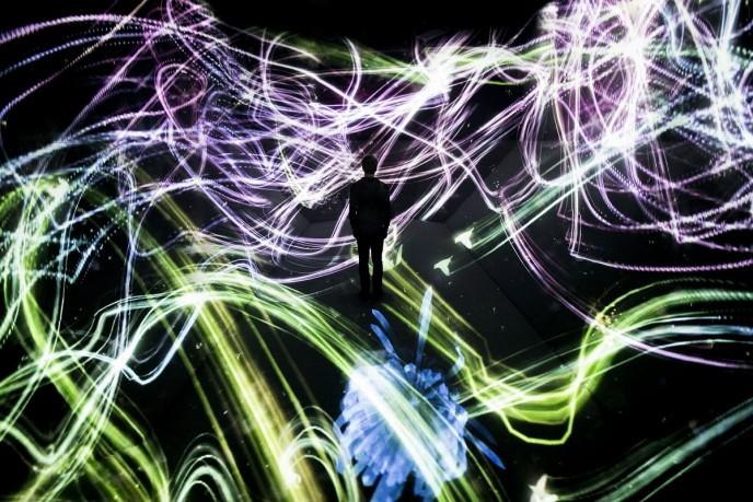 『追われるカラス、追うカラスも追われるカラス、そして超越する空間』photo by teamLab