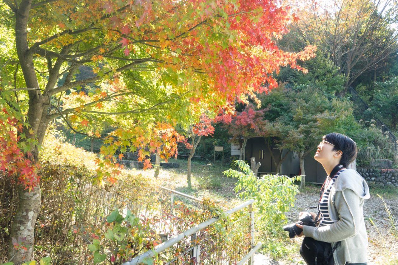 spot_okutama_24