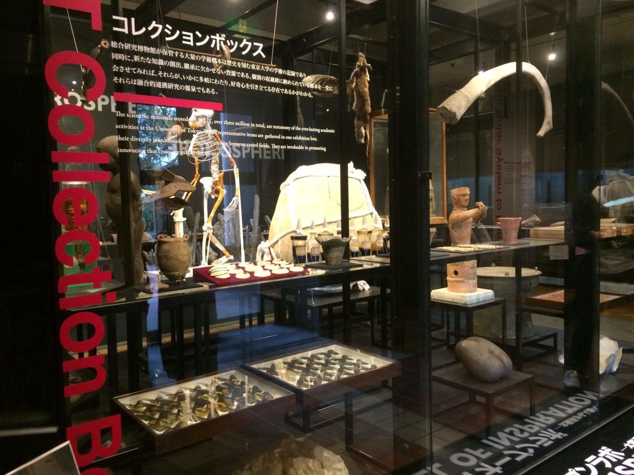 キャプション:博物館入り口の様子。たしかに展示品のジャンルがばらばらだ。