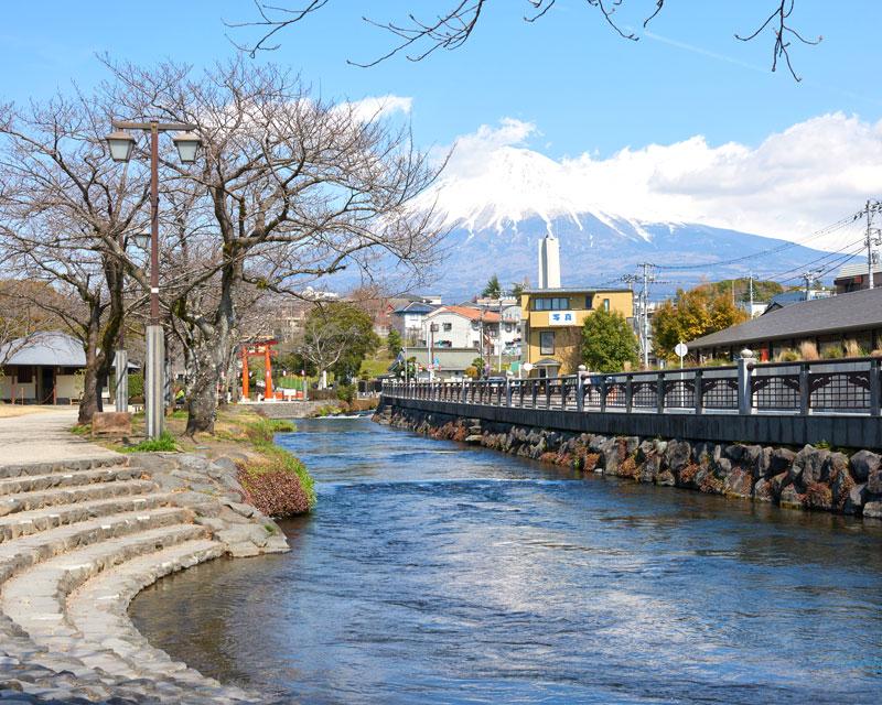 静岡 観光 穴場