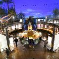 本物の化石がゴロゴロ?恐竜博物館見学&化石発掘体験で歴史に名を残す!【恐竜王国福井】