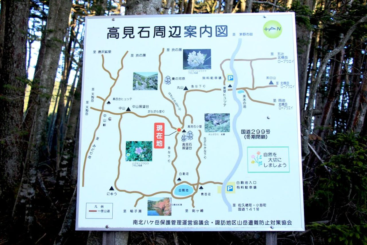 maya-yamamoto 長野