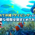 【保存版】初めて沖縄でダイビングしたい人に必要な情報全部まとめてみた!