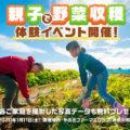 【写真データも無料プレゼント】親子で野菜収穫&その場で料理するイベント開催します!