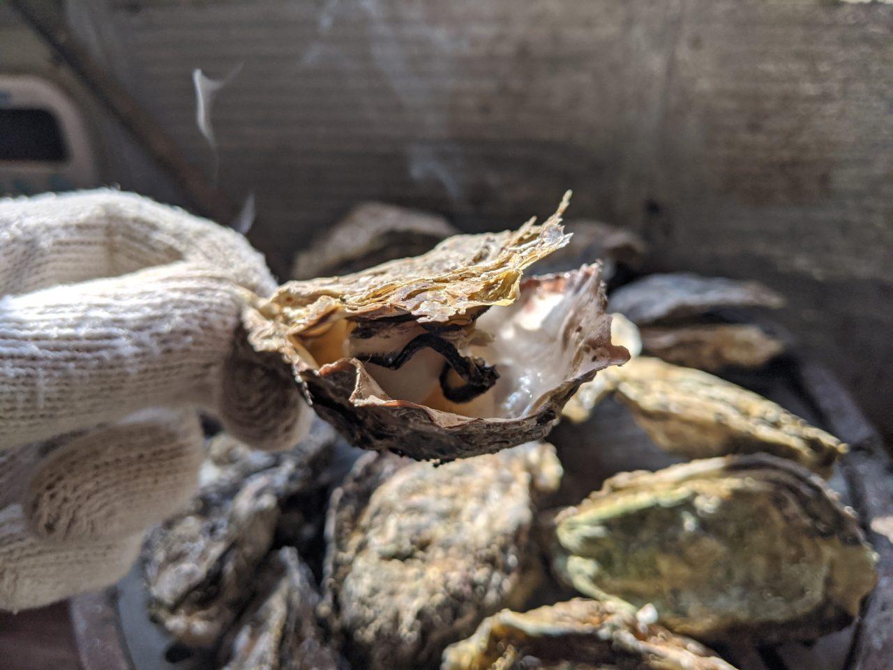 食べ すぎ 牡蠣