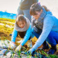 新宿から1時間!やおきファーマーズクラブの親子農業体験が超自由