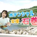 【宮城県】漁港の街、石巻のポテンシャルが凄いので紹介させてください